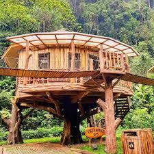 3 Penginapan Dengan Konsep Rumah Pohon Yang Ada Di Indonesia.